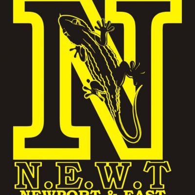 NEWT - Newport and East Wales Triathlon