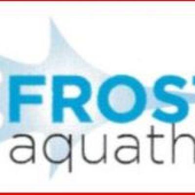 Frosty Aquathlon