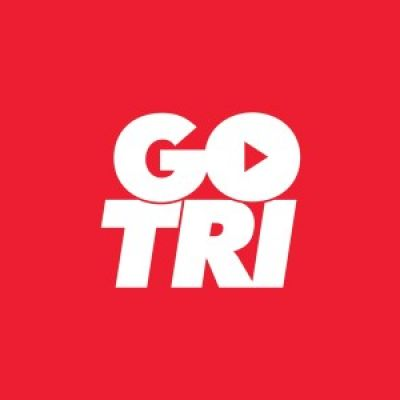 Image result for british triathlon gotri logo