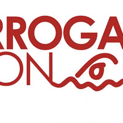 Harrogate Sprint Triathlon